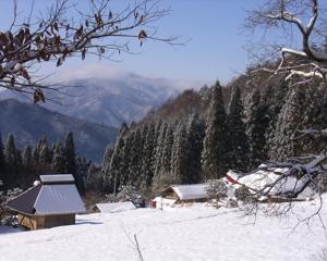 horakuan in winter_small